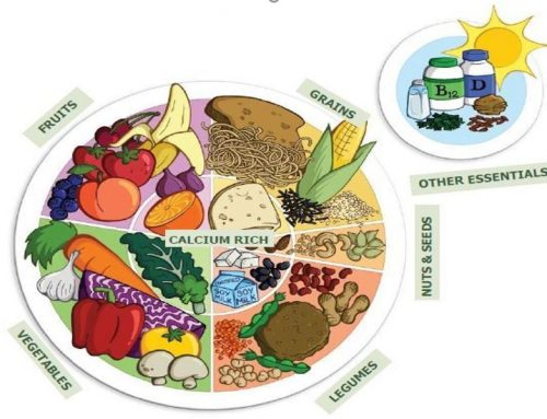 What is the Nutrition-Health Connection of Lifestyle Medicine?